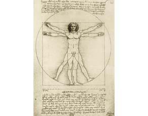 Léonard de Vinci (1452-1519), Proportion de l'homme ou l'Homme de Vitruve (détail) (1492)