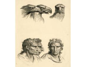 Gravure de Ch. Le Brun (1619-1690), Trois têtes d'aigle et trois têtes d'homme en relation avec l'aigle